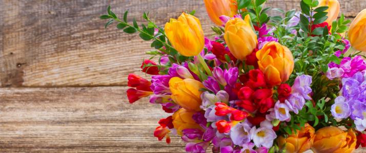 Nieuwsbericht: Welke unieke bloem ben jij?