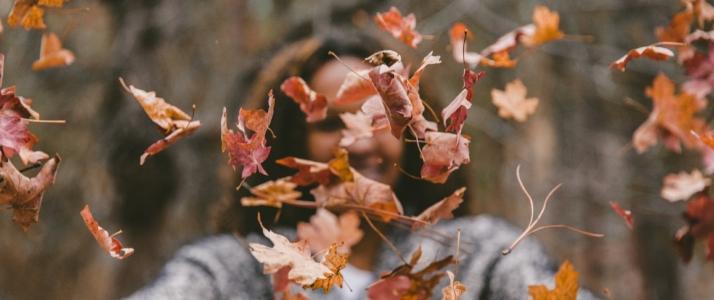 Nieuwsbericht: Het is herfst, tijd om los te laten